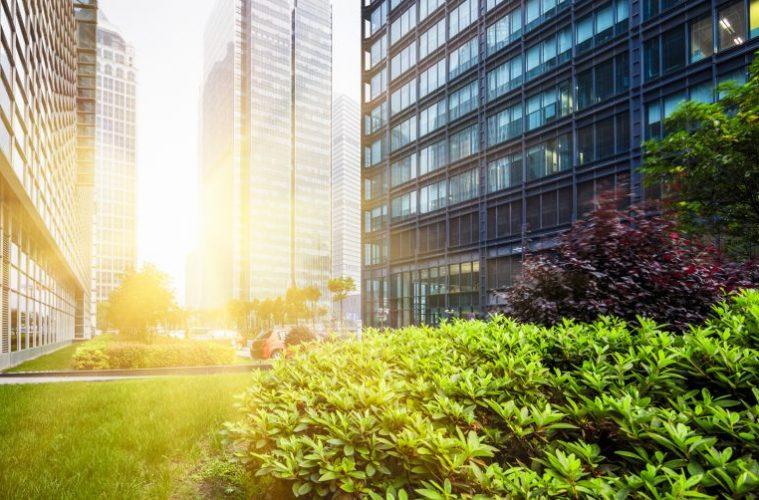 carbon credits Hong Kong